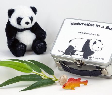 Giant panda kit blue stem giant panda kit fandeluxe Image collections