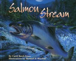 Salmon-Stream